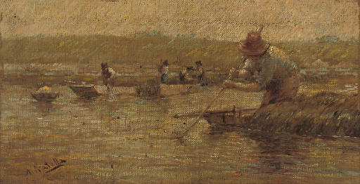 Collecting fruits of the sea