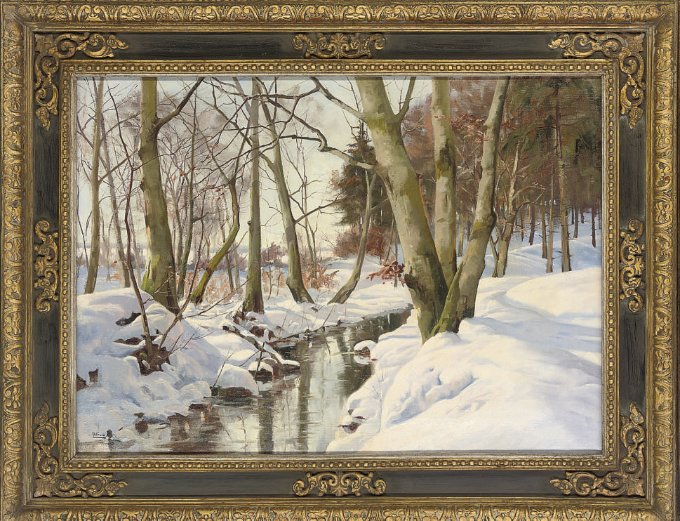 A stream in a winter forest, Hareskov