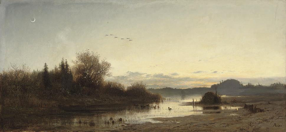 Ducks on a lake at dusk