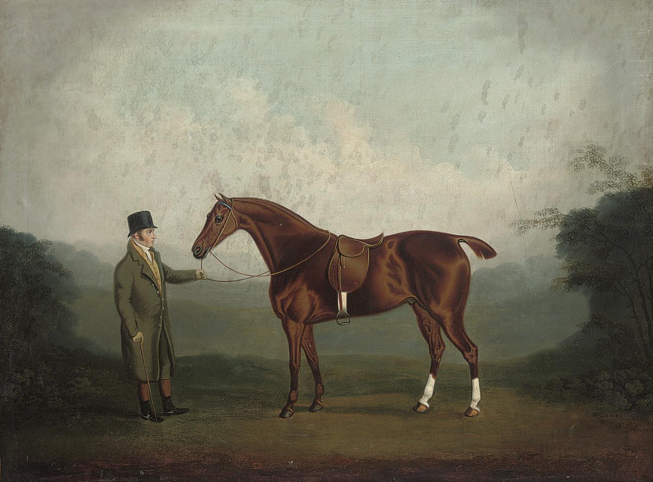 A bay hunter held by a gentleman in a landscape