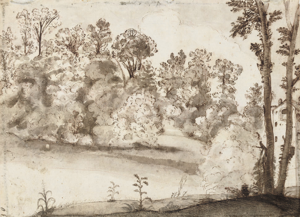 A wooded landscape with a farm