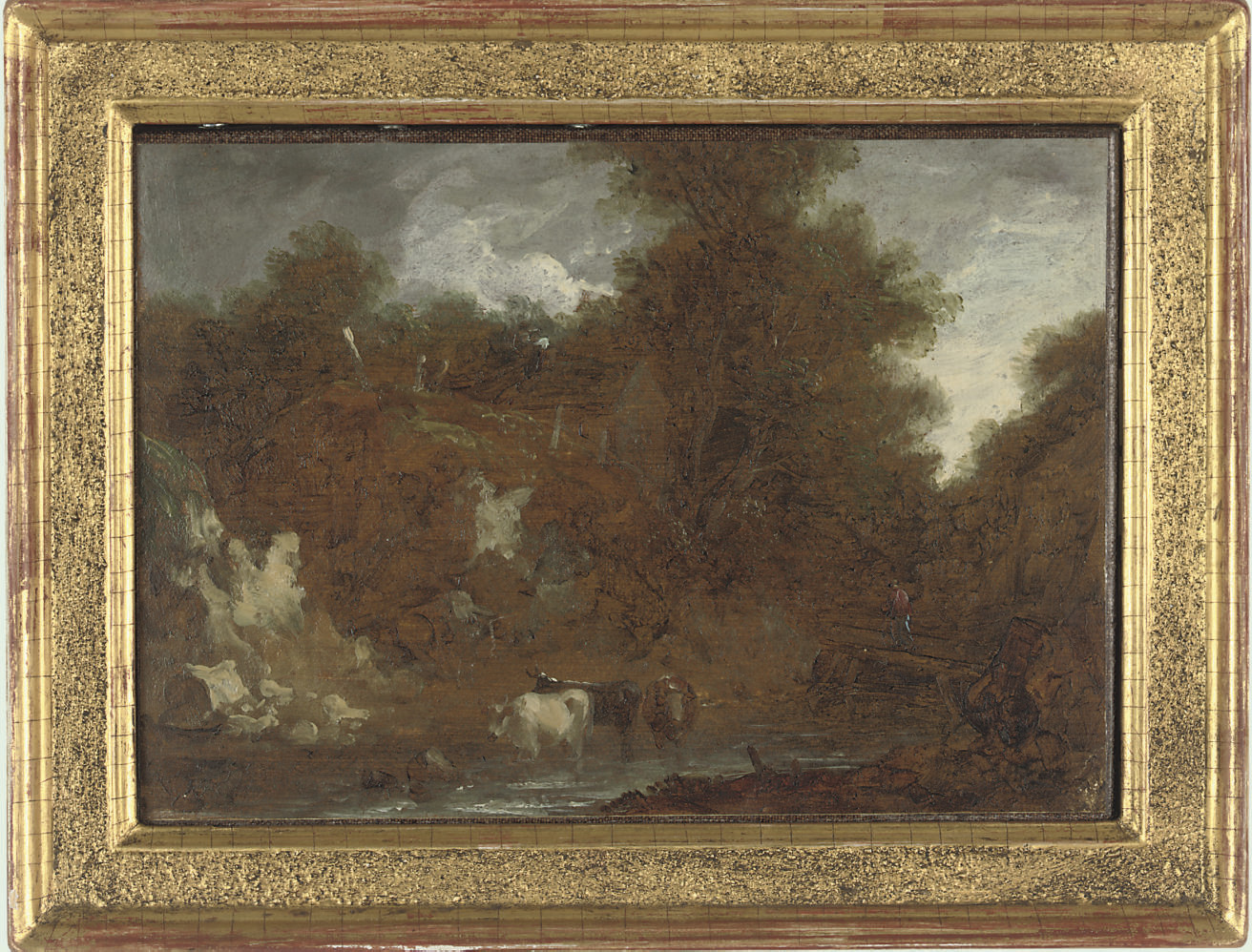 Cattle in a woodland stream