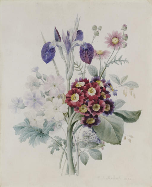 A bunch of flowers with a blue iris and some red auriculae
