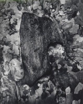 WYNN BULLOCK (1902-1975)