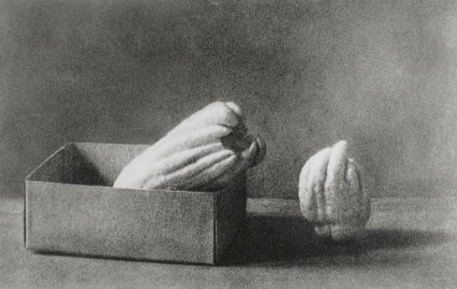 Fingered Citrons (Nojima,1-4), 1990