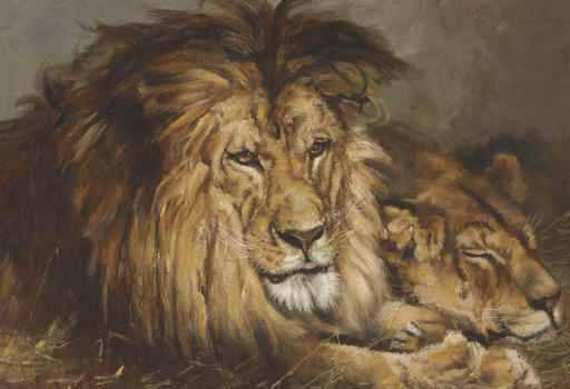 Sketch for 'Lion and Lioness Resting'