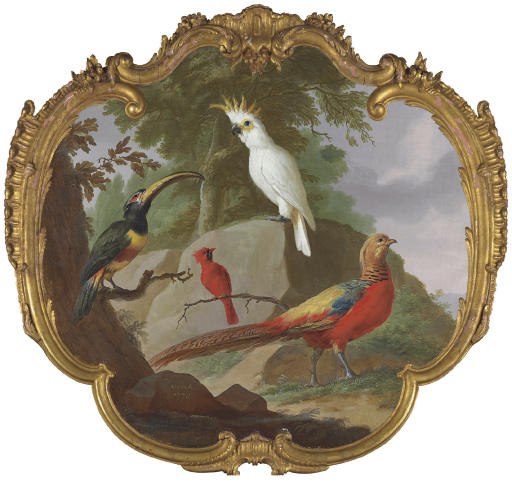 A sulphur-crested cockatoo, a golden pheasant, a cardinal and a toucan in a landscape