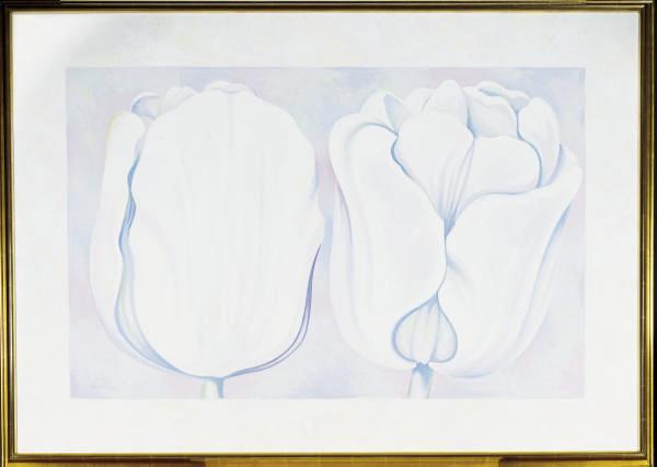 Two White on White Tulips