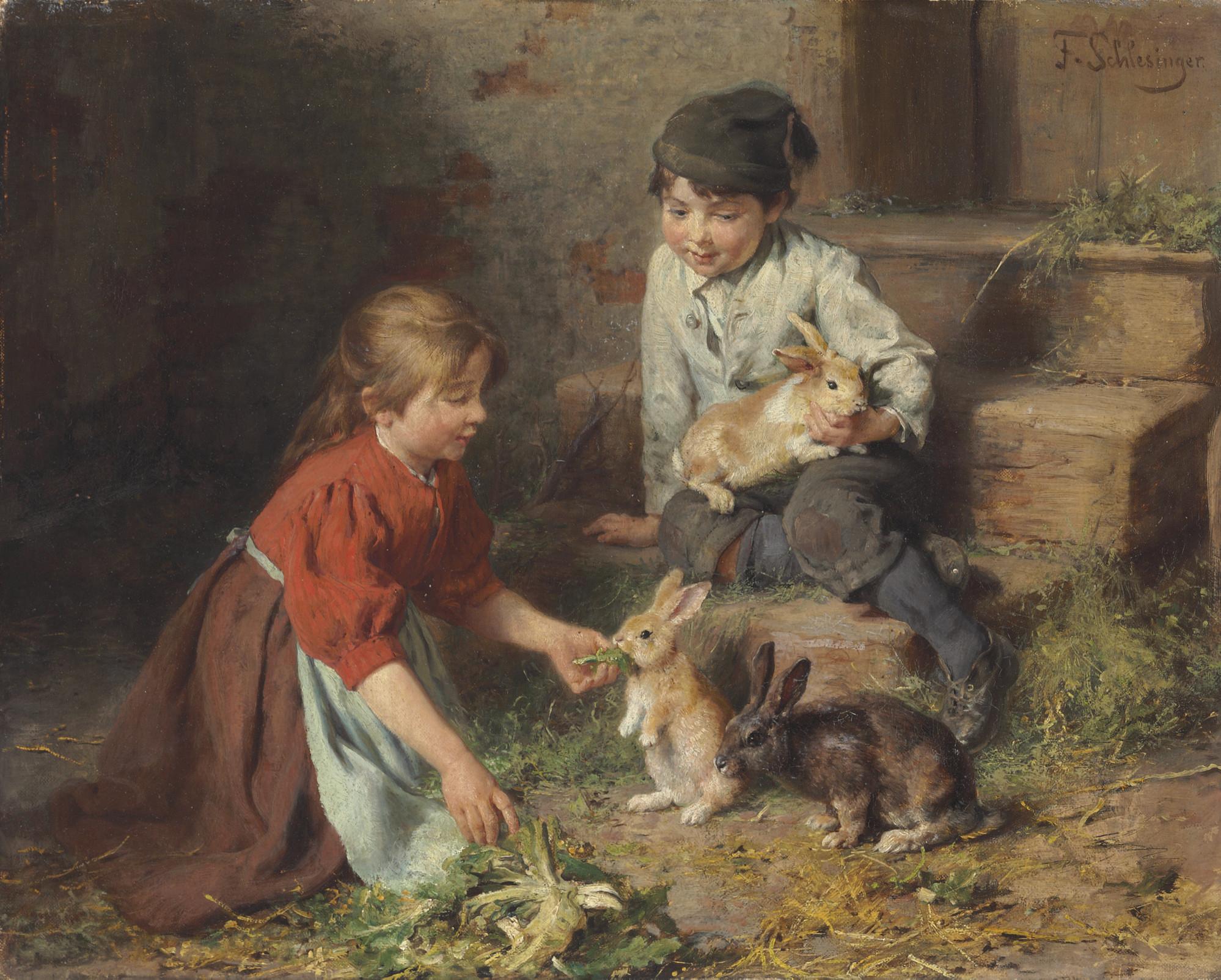 Fütterung der Kaninchen