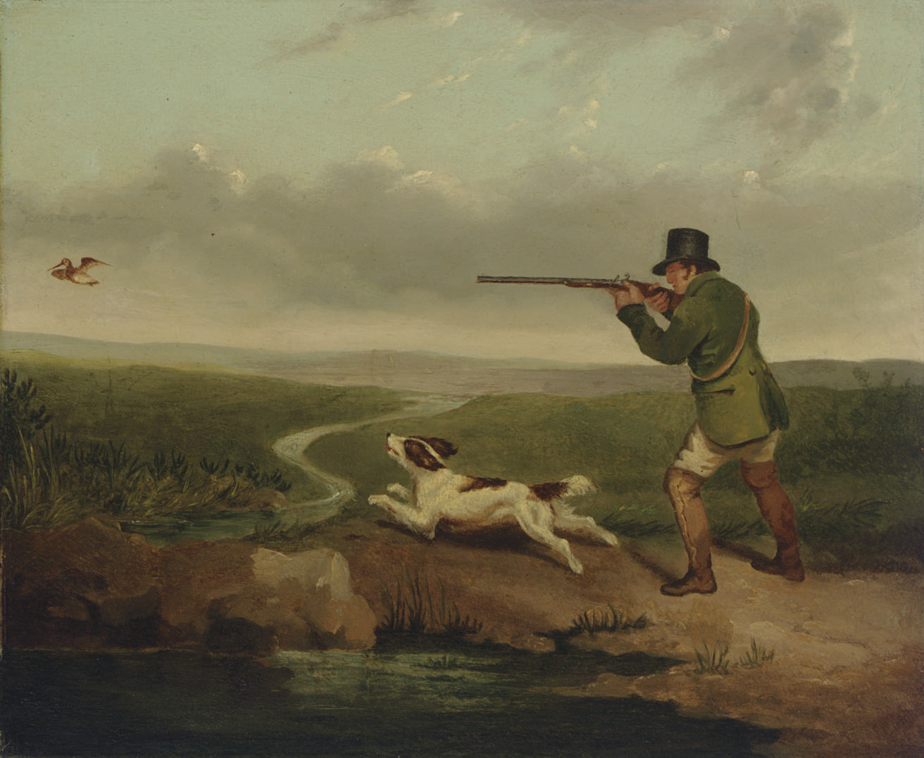 Shooting woodcock