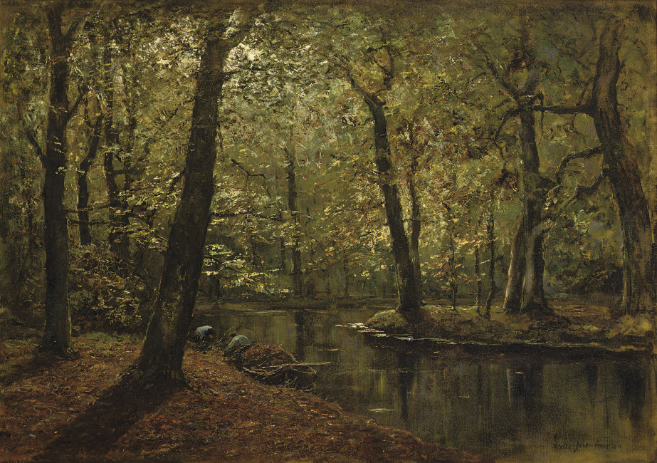 Boschvijver: a forest in autumn