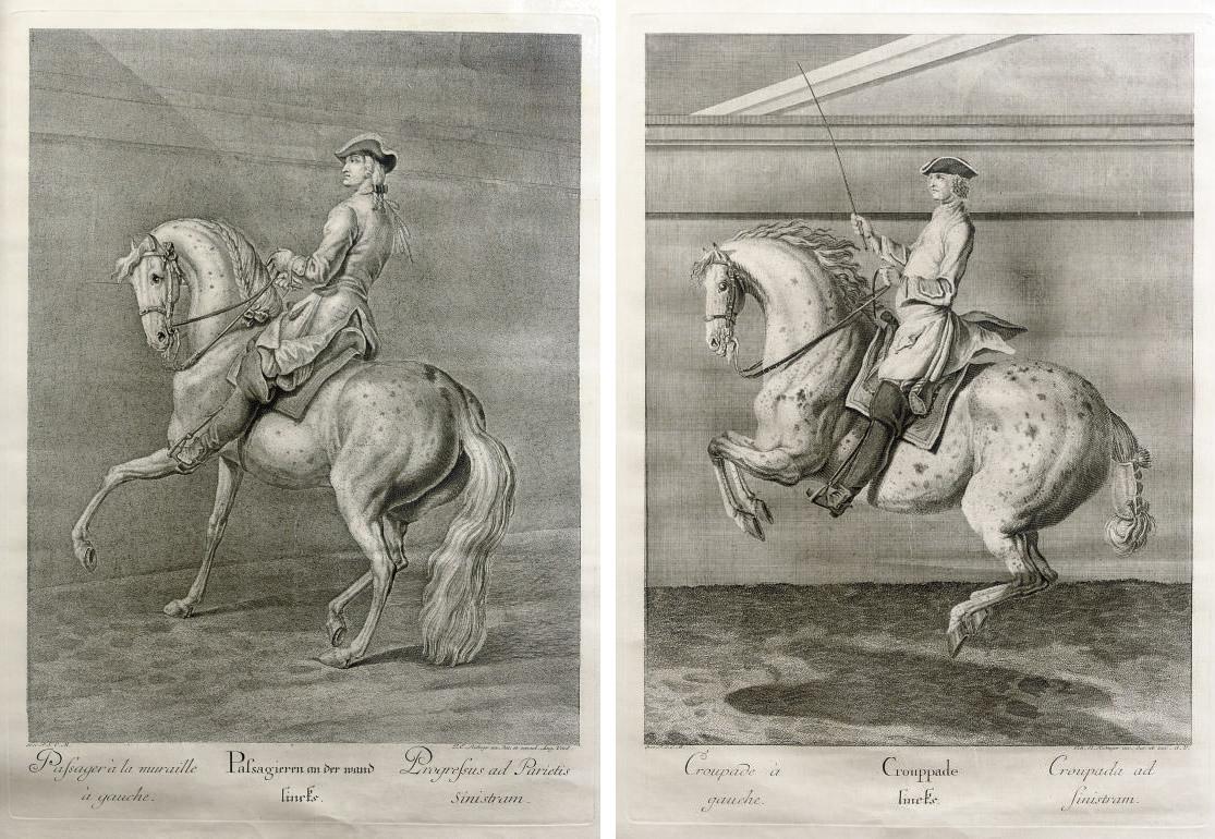 Johann Elias Ridinger (1698-1767)