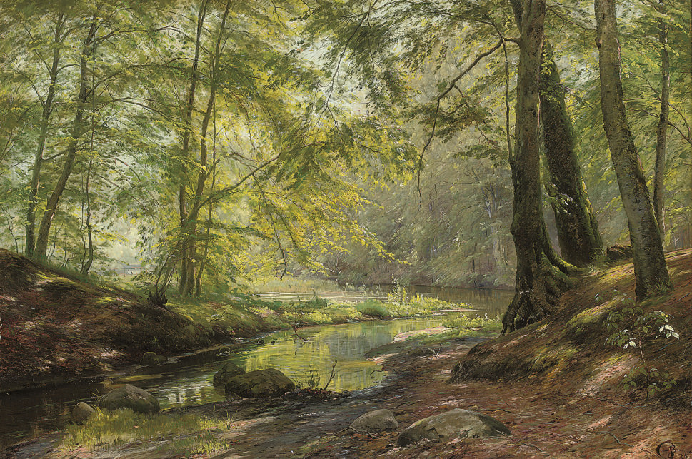 A woodland brook