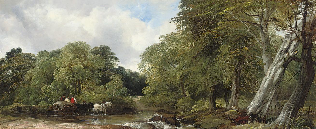 A Woody River Scene