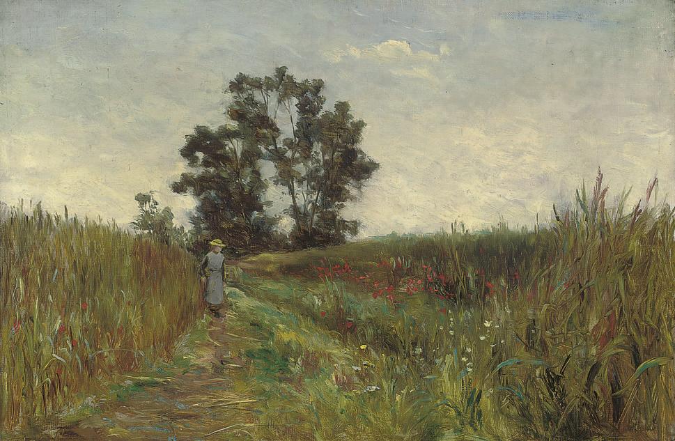 A walk through the fields