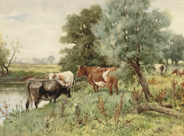 Cows grazing by a river bank