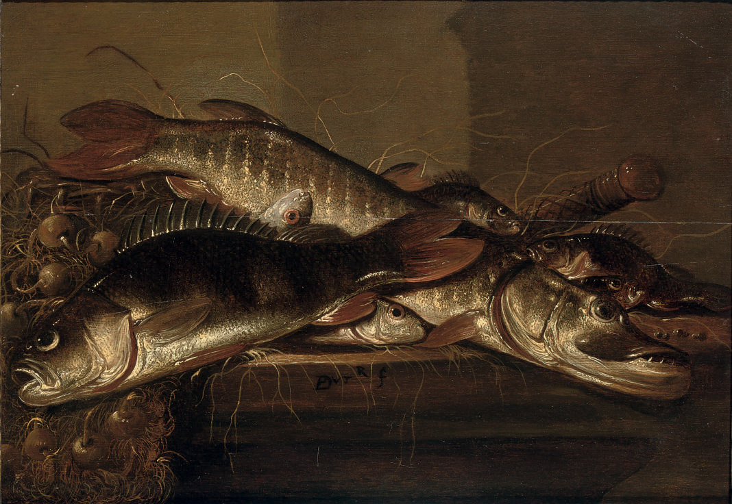 A pike, perch and various other fish together with onions on a table