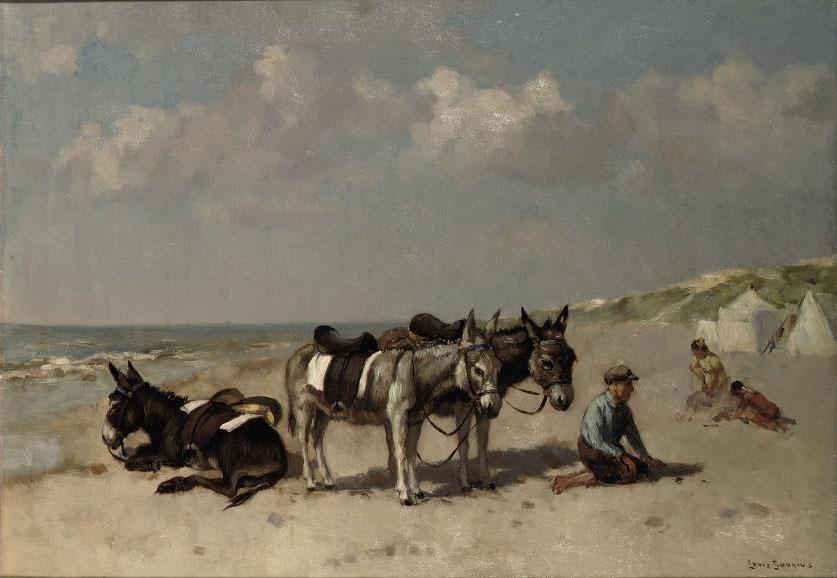 Donkeys on the Beach
