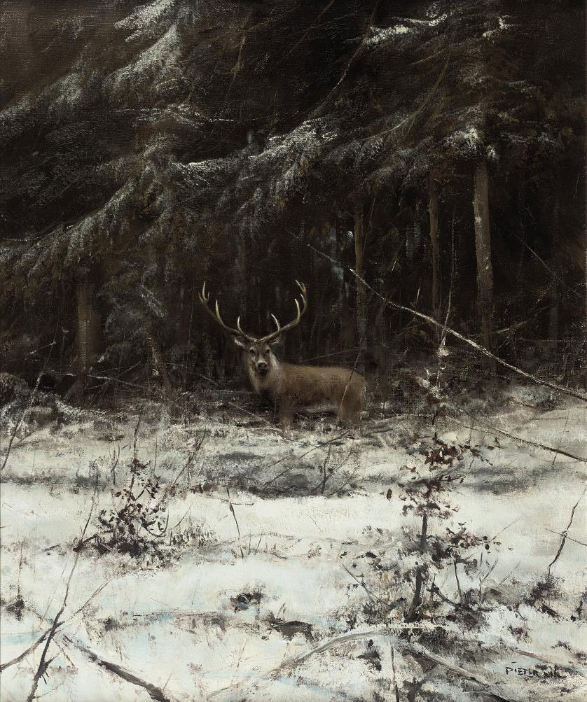 Deer in a forest in winter