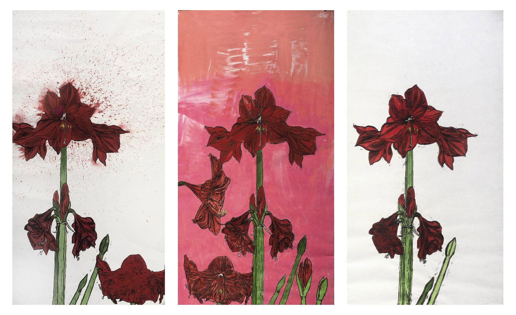 Amaryllises - a triptych
