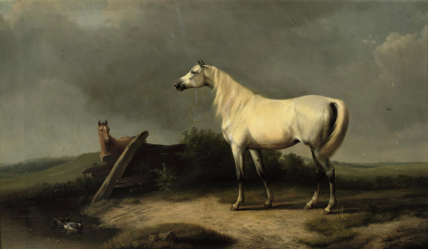 A white mare and her foal