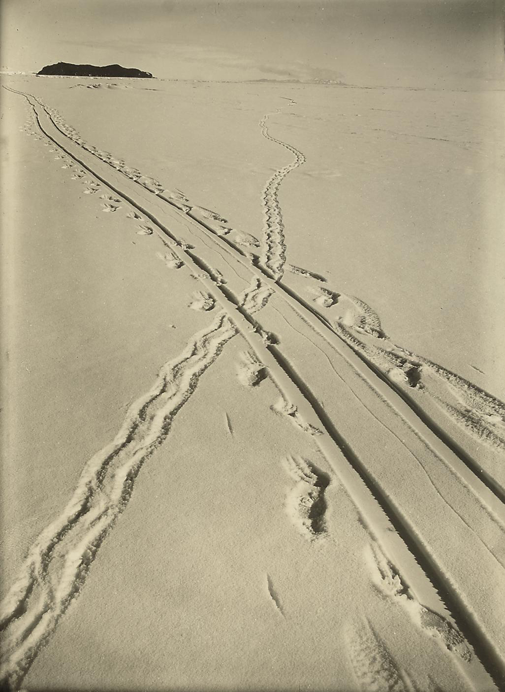 British Antarctic Expedition, 1910-13: 32 contact prints, all studies of ice formations at Cape Evans and environs