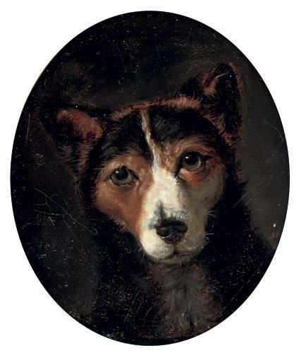 A favourite terrier