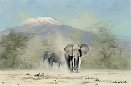 Amboseli elephants, with Kilamanjaro beyond