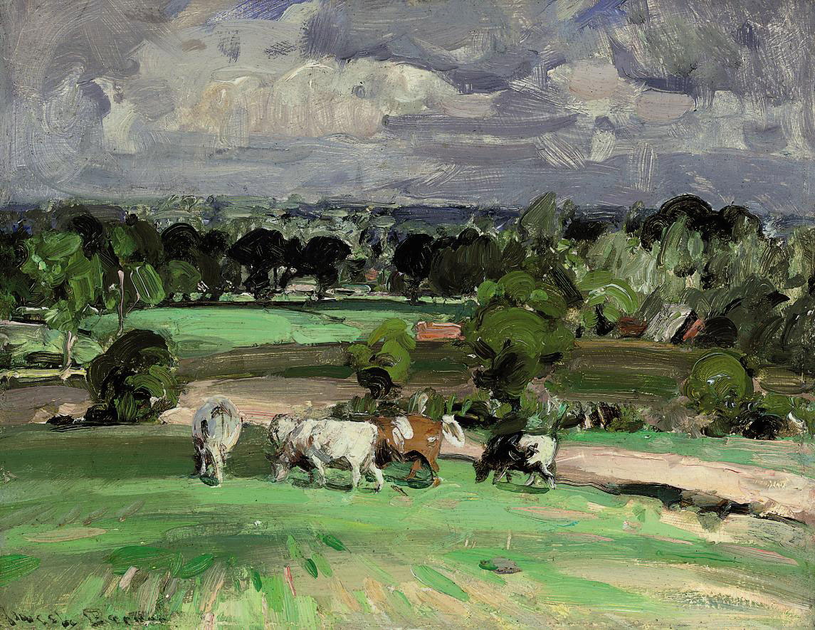 Cows grazing on a summer's day