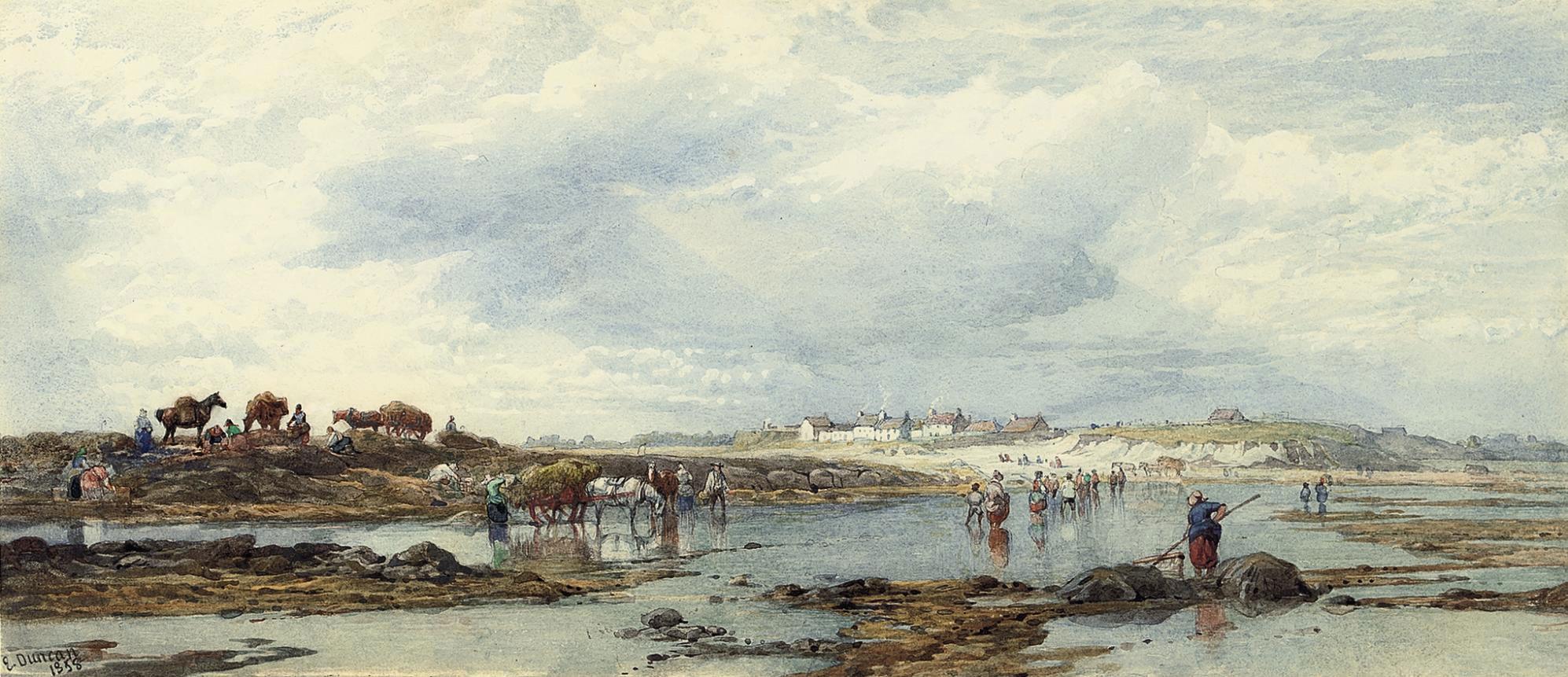 Vraic gathering, Guernsey
