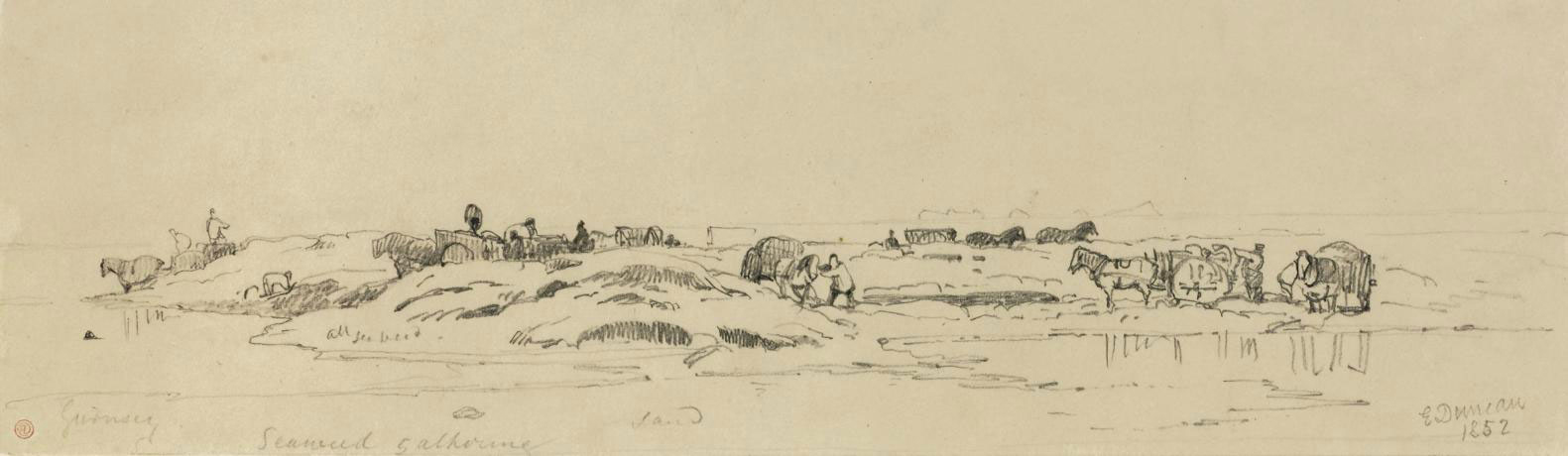 Sketches in Jersey and Guernsey, including scenes of 'Drawing Lumber'; 'Seaweed gathering'; 'Launching boat'; and 'Pulling Wreck ashore'