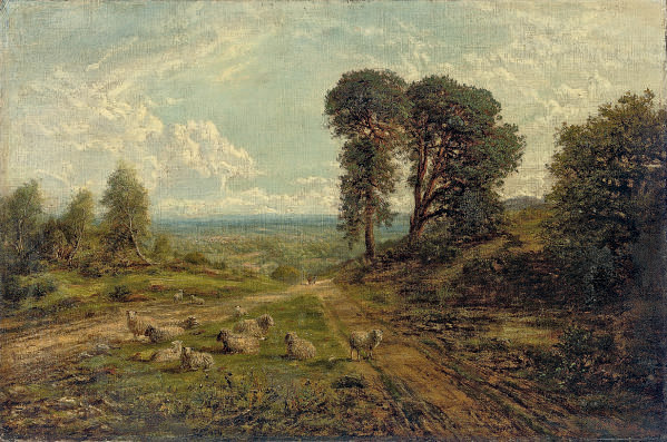 A flock of sheep in an extensive landscape