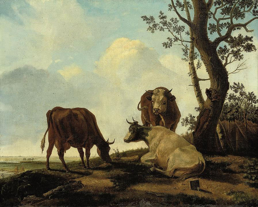 Cattle in a river landscape