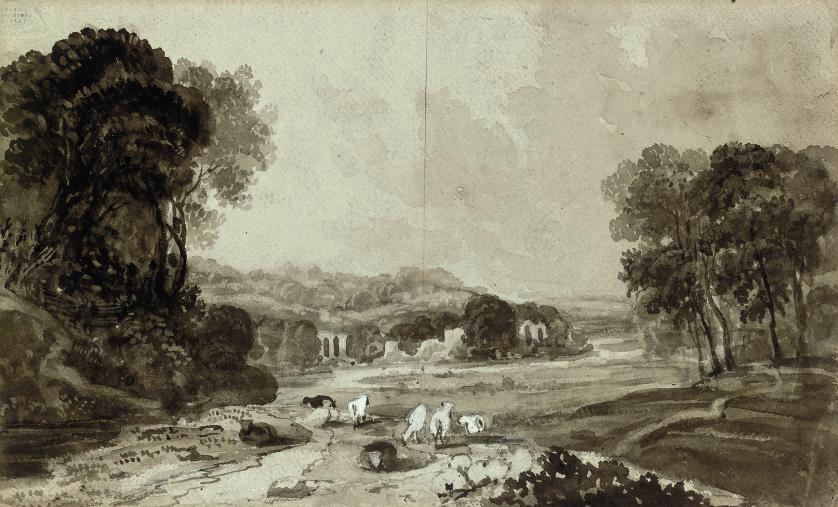 Sheeping grazing in a landscape