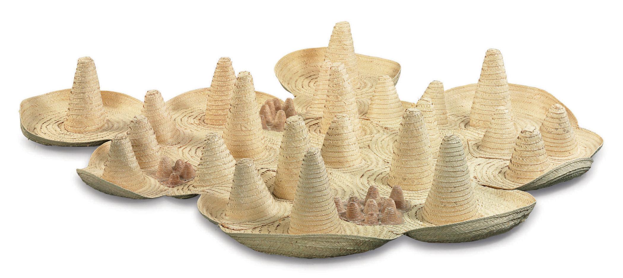 Sombreros colectivos