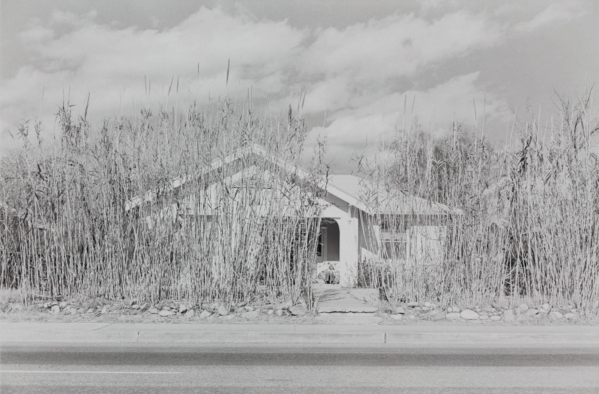 Tucson, Arizona, 1974