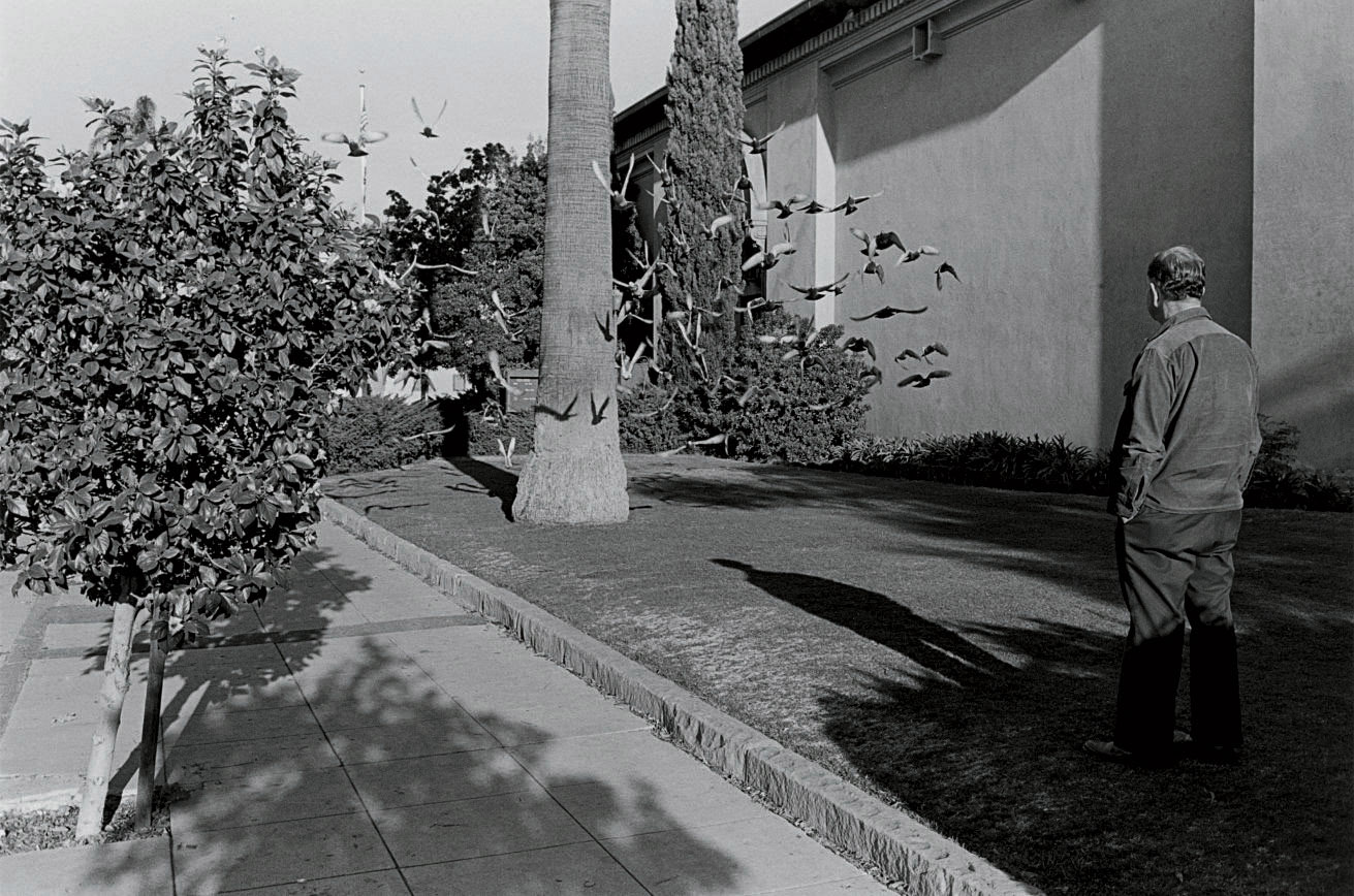 Santa Barbara, 1977