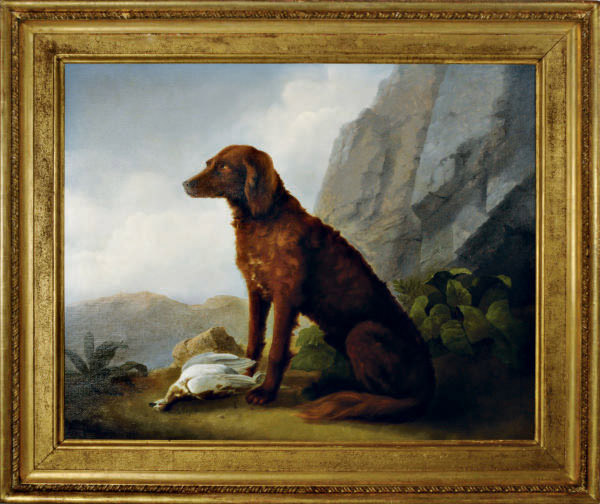 A hunting dog with its prey in a landscape