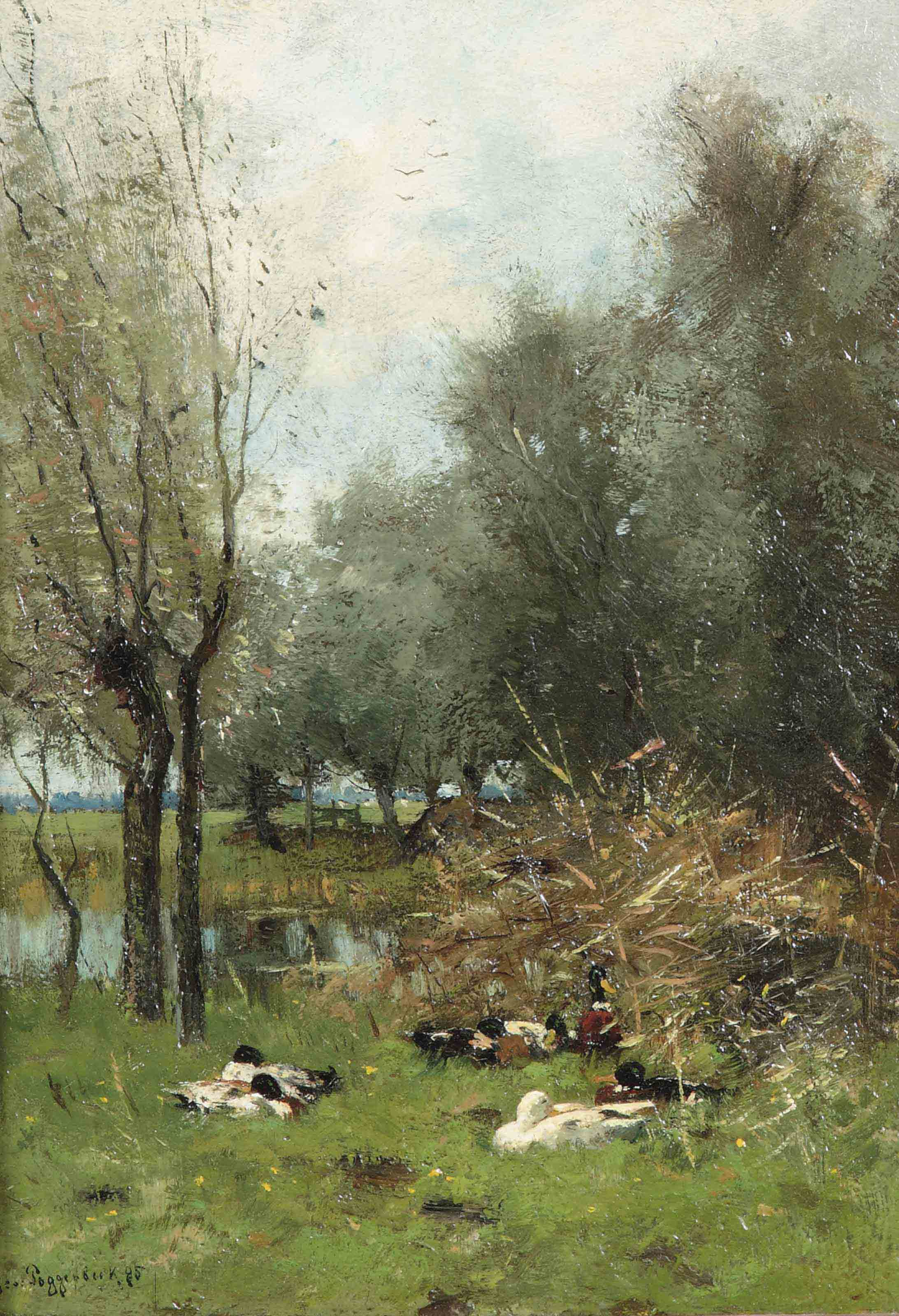 Ducks resting amongst the trees