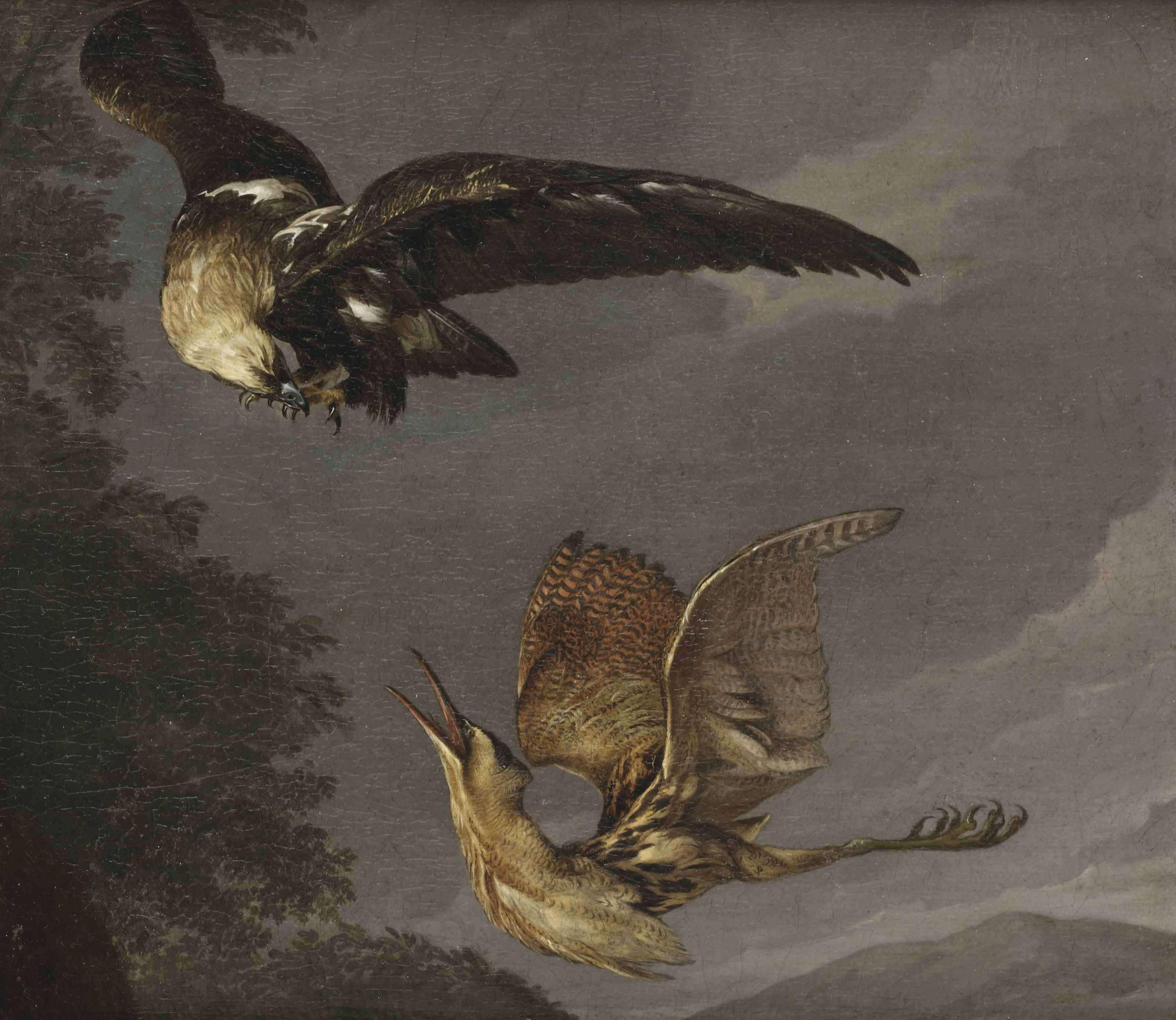 A Golden Eagle and a Bittern in flight