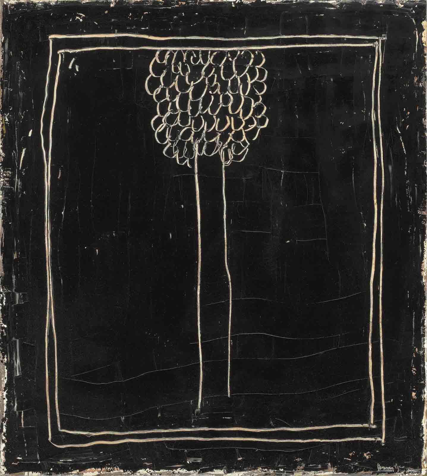 Xiprer Negre (Black Cypress)