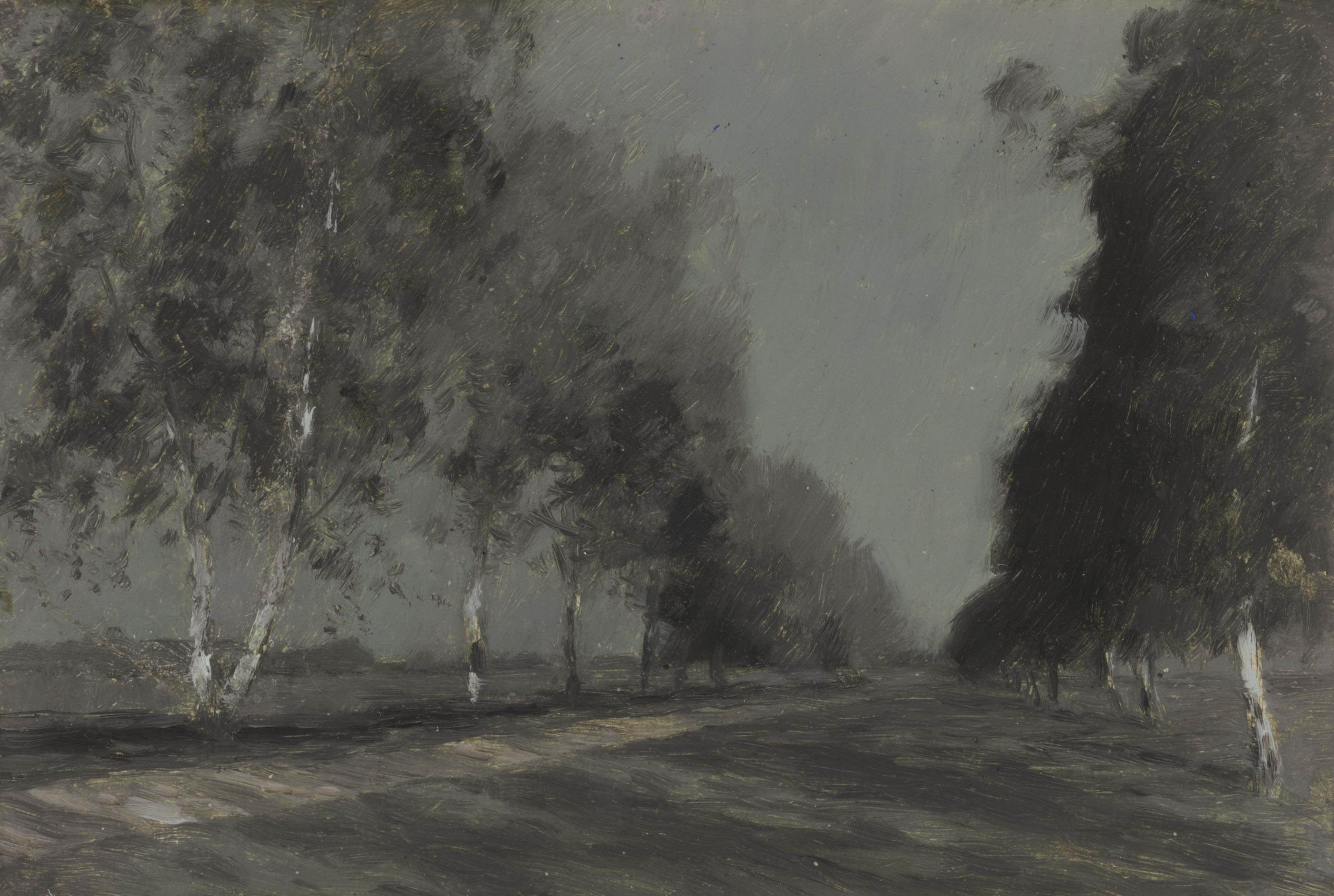 Study for 'Moonlit night'