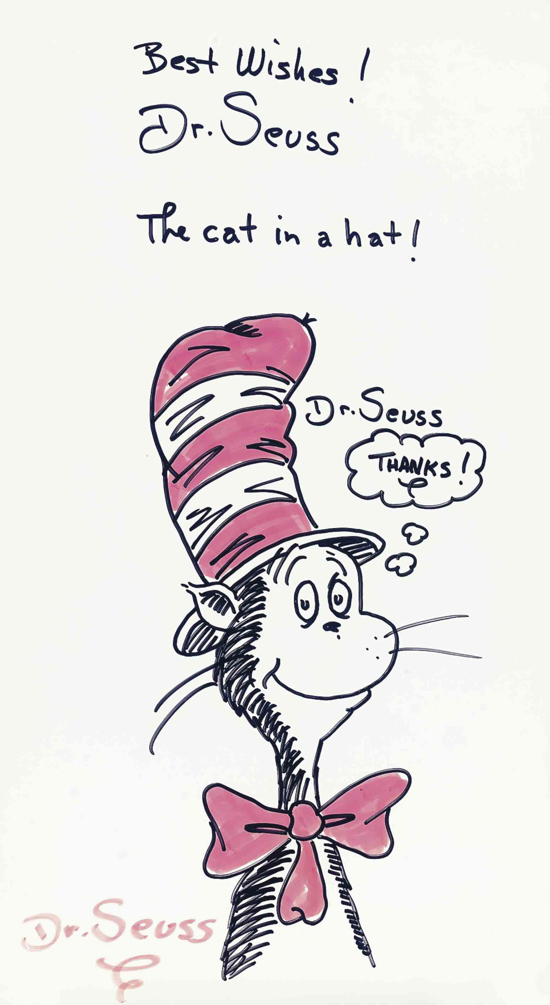 The cat in a hat!