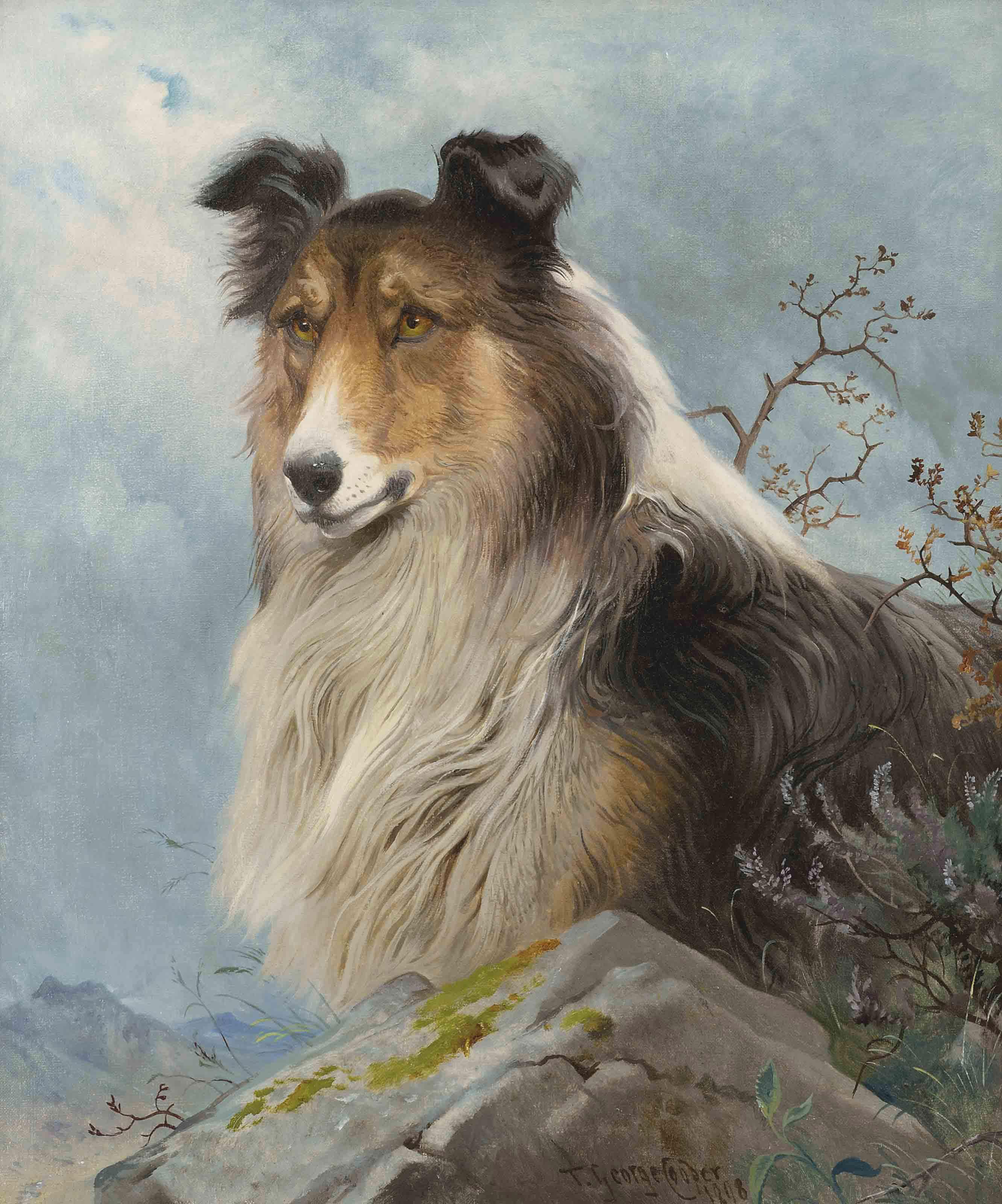 The shepherd's friend