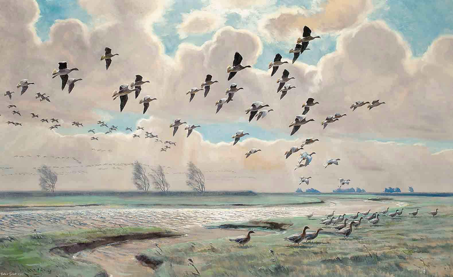 Pink-footed geese coming out from the fields; and Pink-footed geese in flight (verso)
