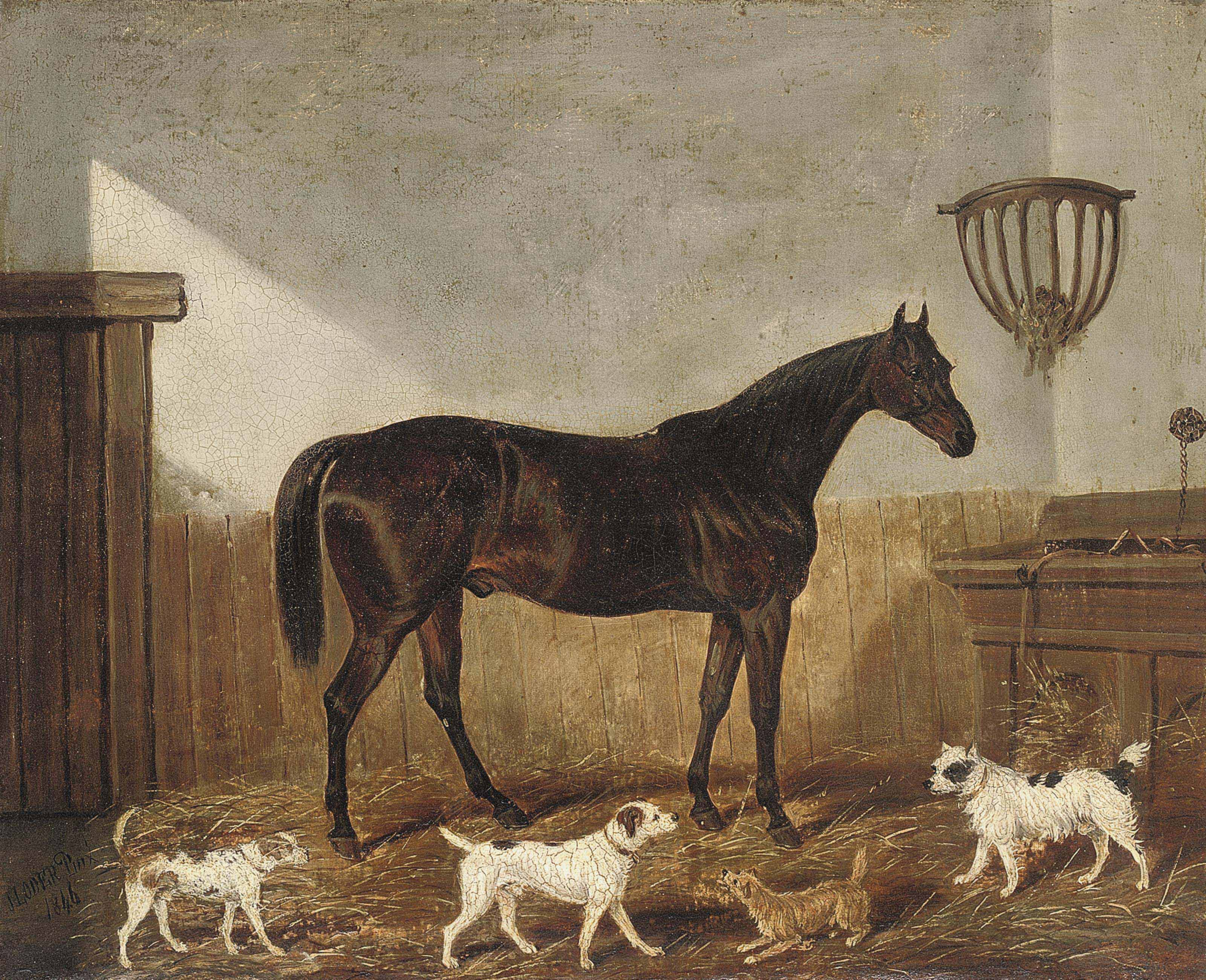 A favourite hunter and terriers in a stable