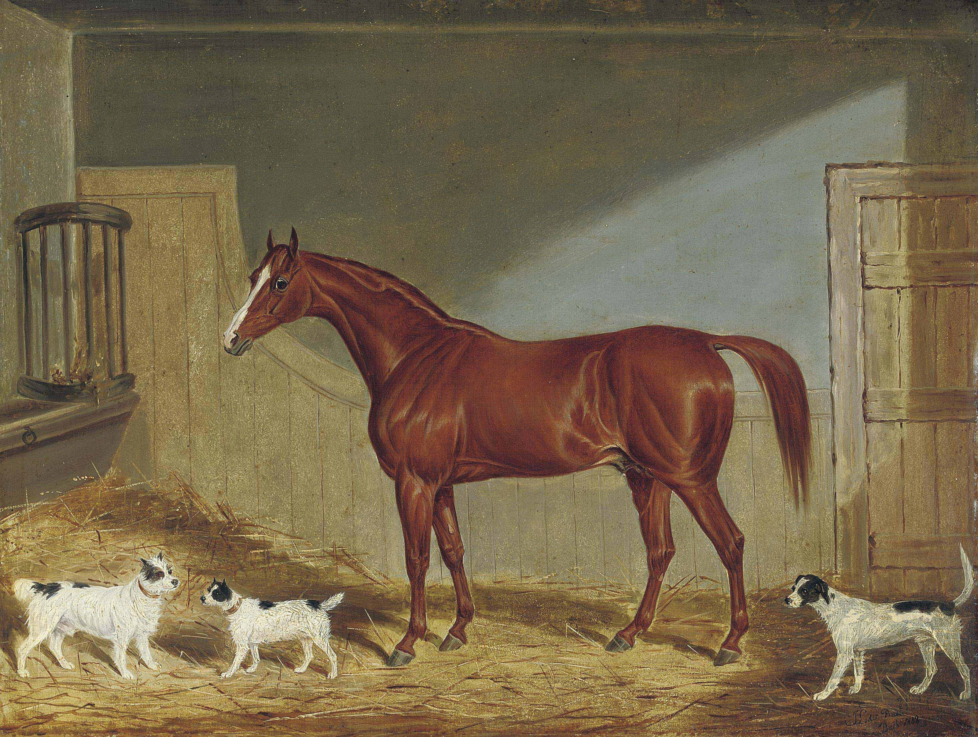 A chestnut hunter, two terriers and a hound in a stable