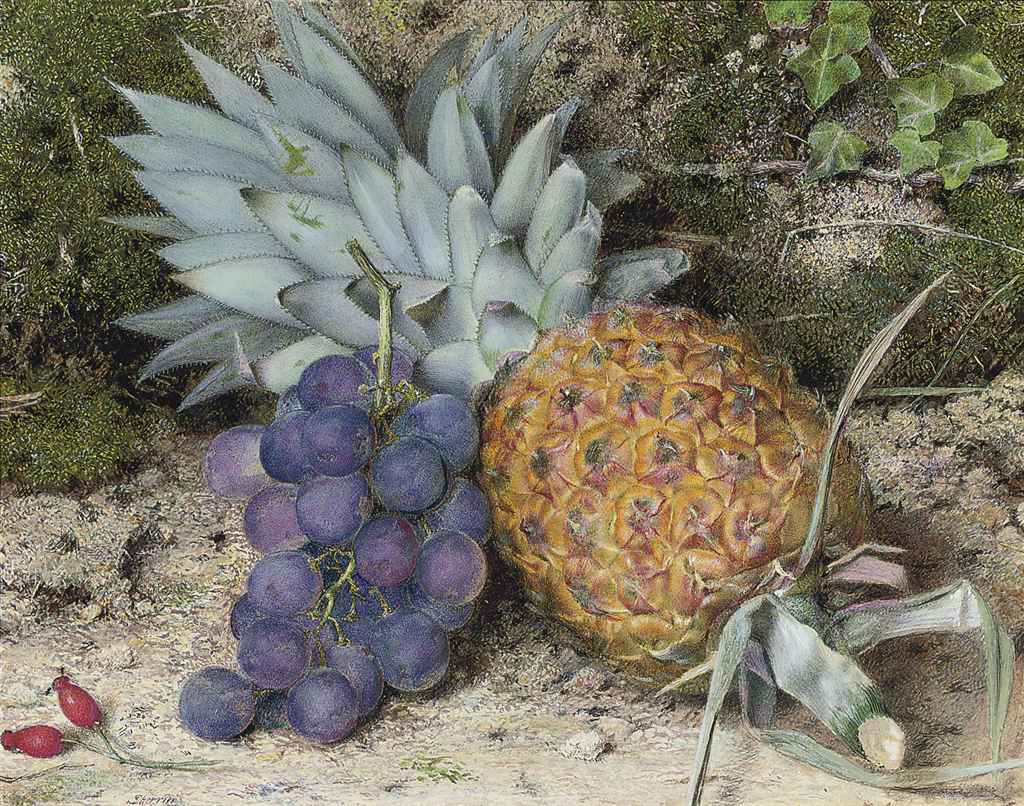 Still life of a pineapple and grapes on a mossy bank