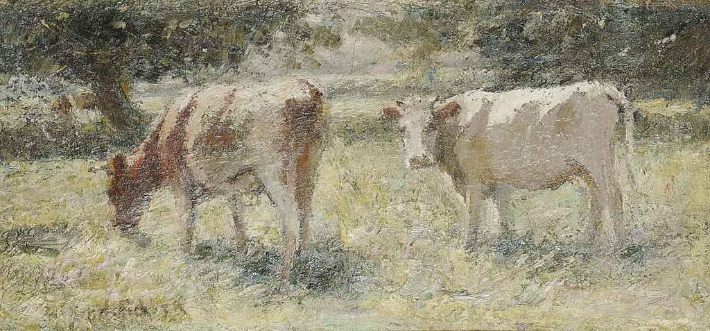 Cattle grazing in a meadow