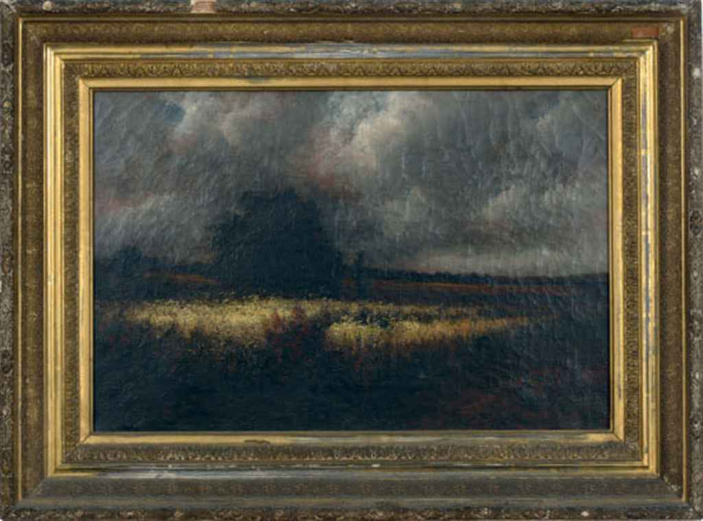 An approaching storm over a cornfield